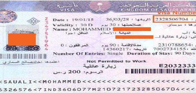 saudi visa number