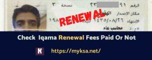 How to check renewal fee of iqama