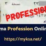 check mehna online